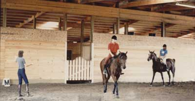 Shadowbrook Stables - Springfield's premier horse boarding